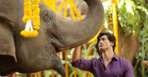 vidyut-junglee-review
